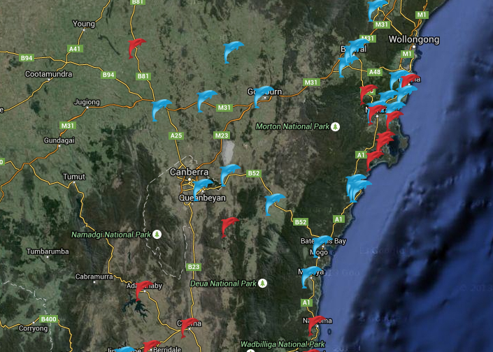 NSW pools - link 1000pools